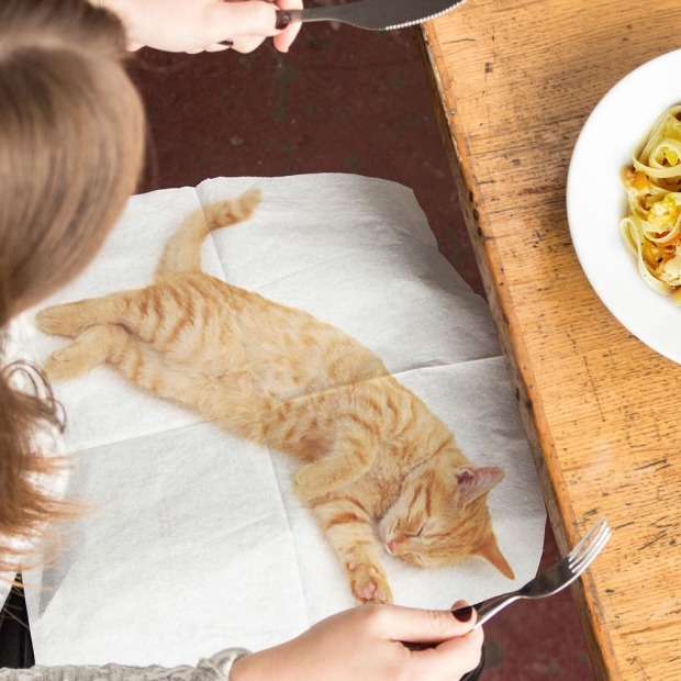 Purrfect Dinner Guest Lap Cat Napkins